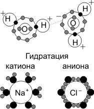 Гидратация катиона и аниона